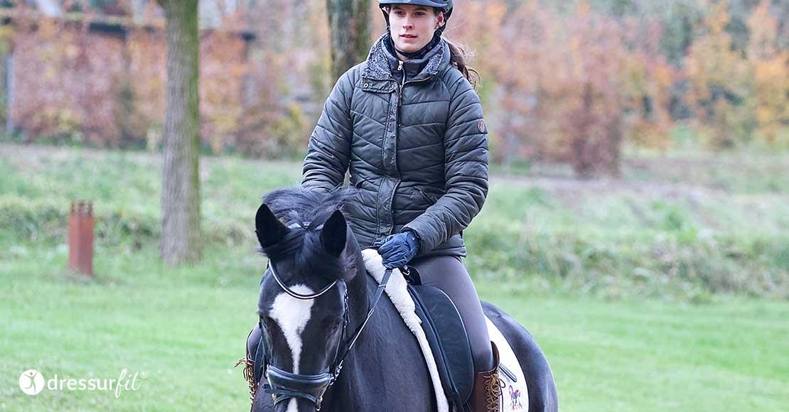 Pferdeausbildung Der Profis In Aubenhausen