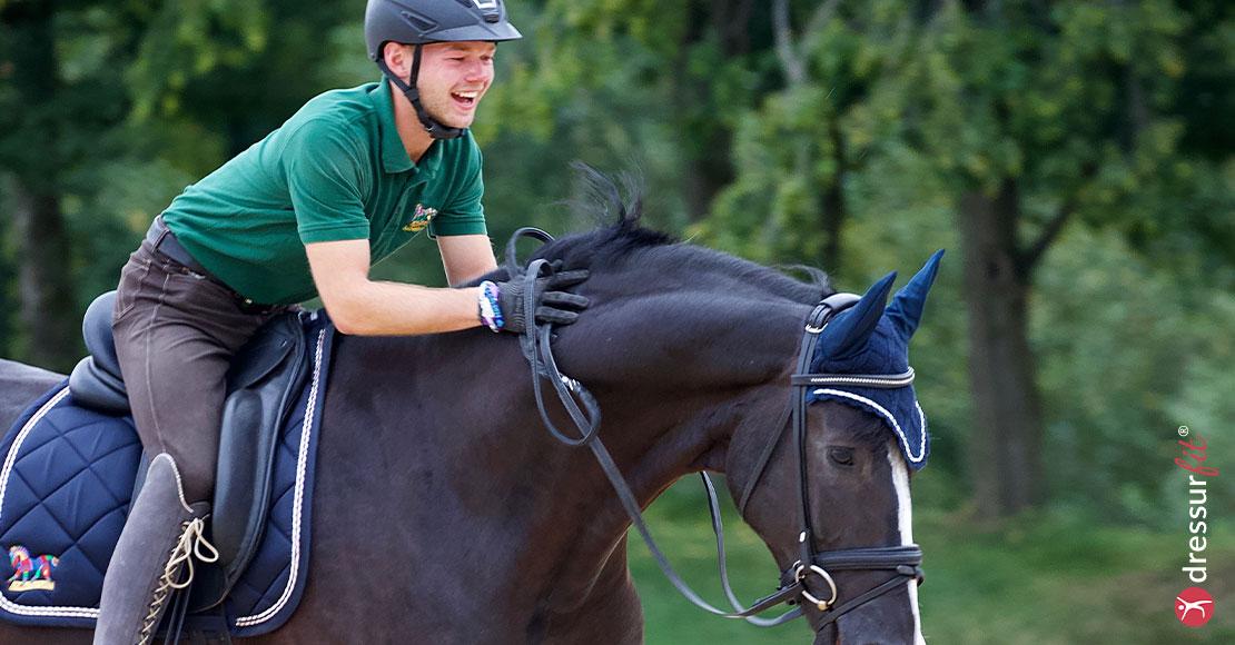 Pausen In Der Pferdeausbildung
