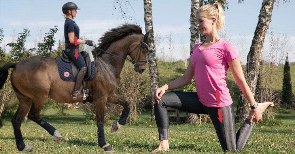 Neuro-athletik für Reiter